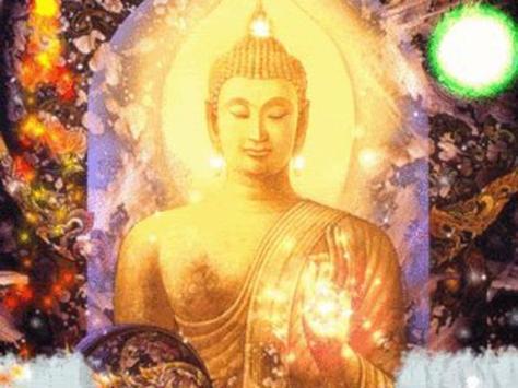 meditate shine