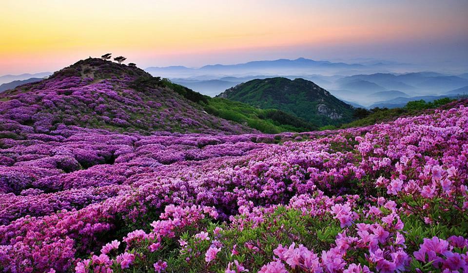 a beautiful scenery essay